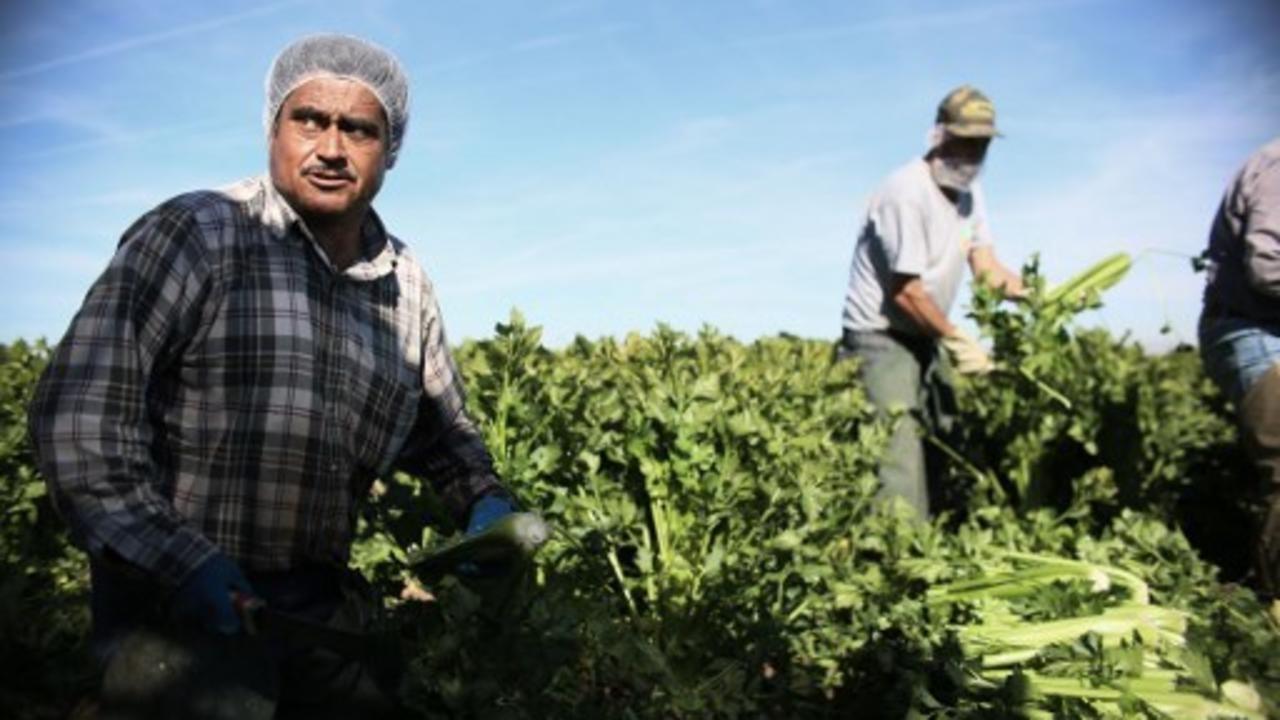 Les envois de fonds des travailleurs migrants aux États-Unis battent des records